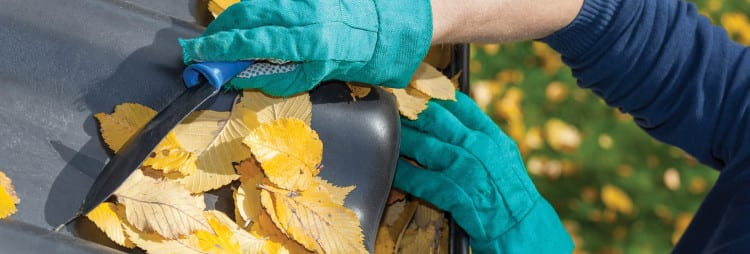 gutter cleaning services Ottawa